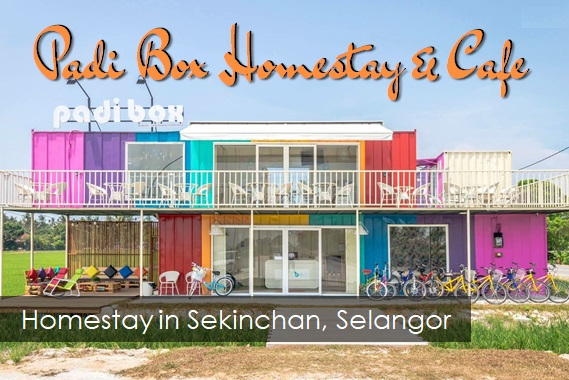 Padi Box Homestay & Cafe